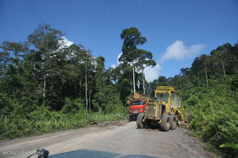 Tractor and a logging truck on a logging road -- borneo_2922