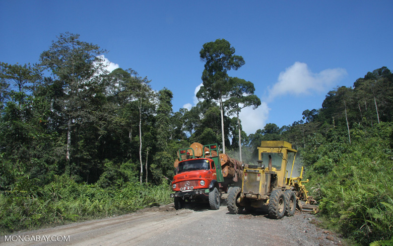 Tractor and a logging truck on a logging road