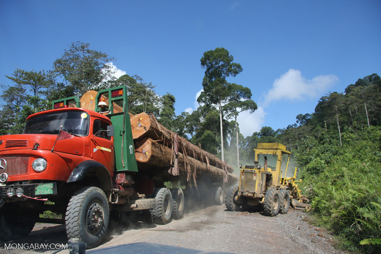 Tractor and a logging truck on a logging road -- borneo_2925