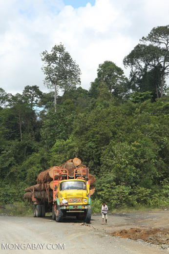 Logging truck carrying timber out of the Malaysian rainforest -- borneo_2933