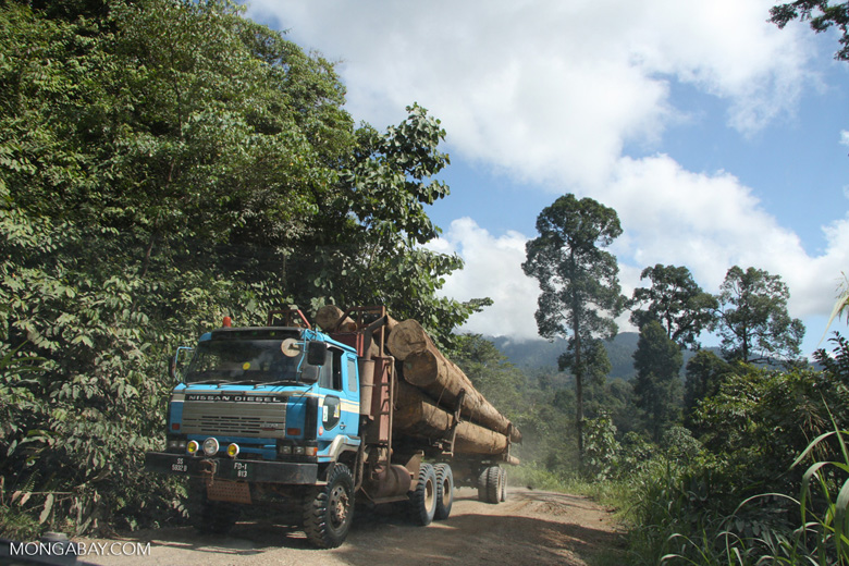 Logging truck carrying timber out of the Malaysian rainforest -- borneo_2947