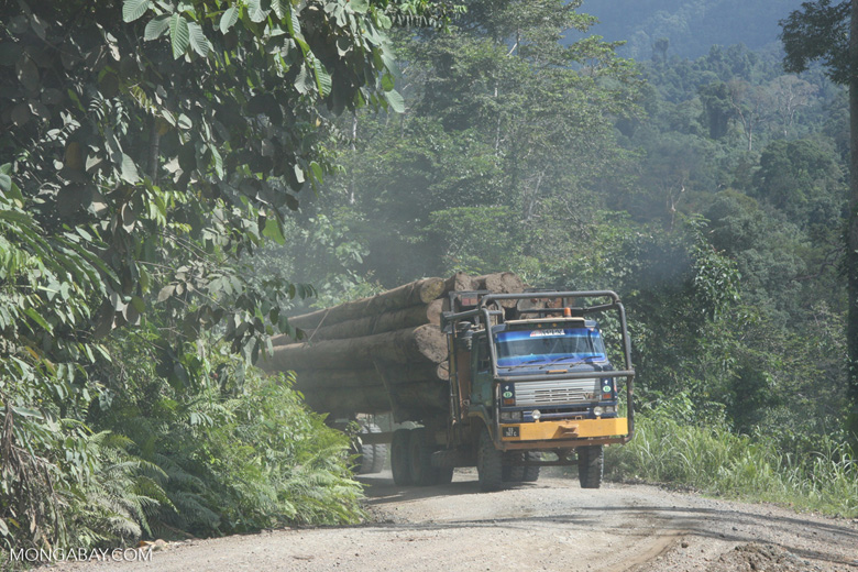 Logging truck carrying timber out of the Malaysian rainforest -- borneo_2948