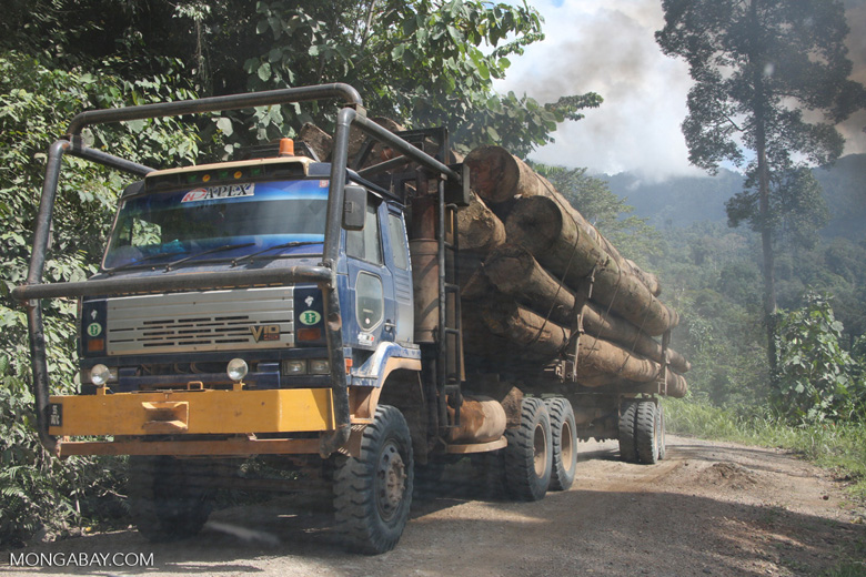 Logging truck carrying timber out of the Malaysian rainforest -- borneo_2954