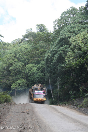 Logging truck carrying timber out of the Malaysian rainforest -- borneo_2965