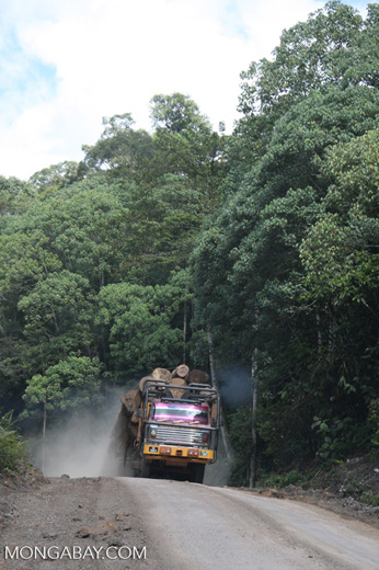 Logging truck carrying timber out of the Malaysian rainforest -- borneo_2966
