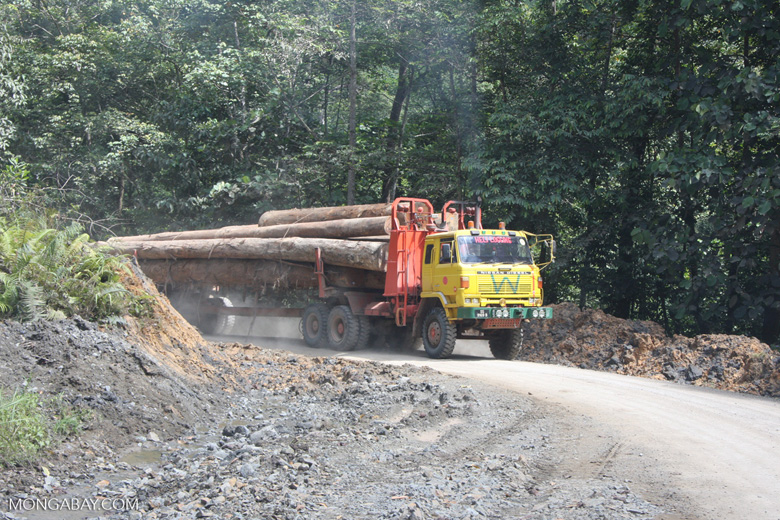 Logging truck carrying timber out of the Malaysian rainforest -- borneo_2980