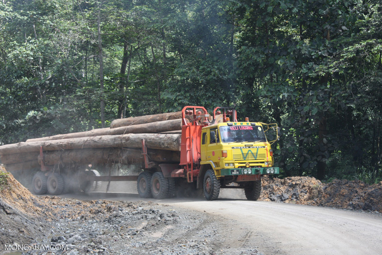 Logging truck carrying timber out of the Malaysian rainforest -- borneo_2981