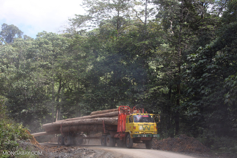 Logging truck carrying timber out of the Malaysian rainforest -- borneo_2982