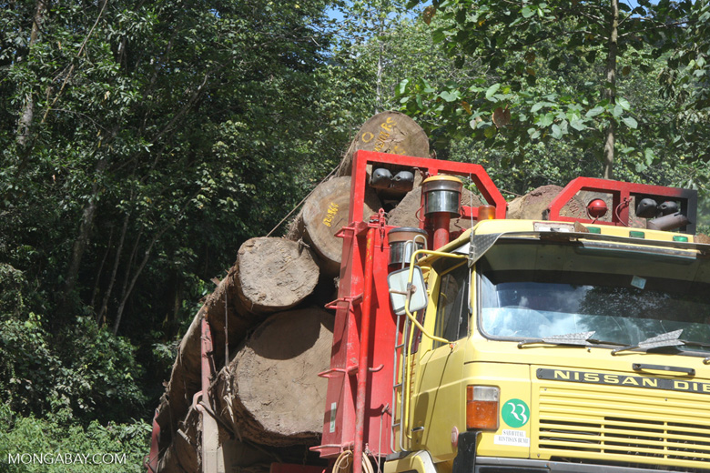 Logging truck carrying timber out of the Malaysian rainforest -- borneo_2988