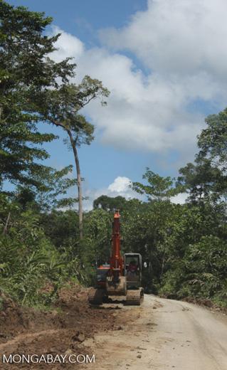 Tractor on a logging road -- borneo_3000