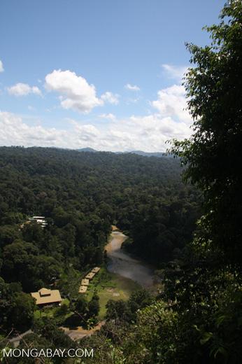 Borneo Rainforest Lodge at Danum Valley -- borneo_3767