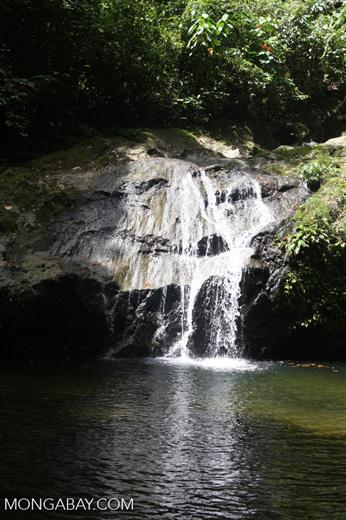 Waterfall in the Bornean rainforest -- borneo_3804