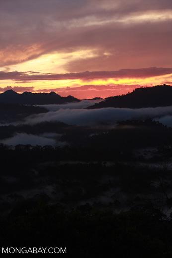 Sunset over the Borneo rainforest -- borneo_4434
