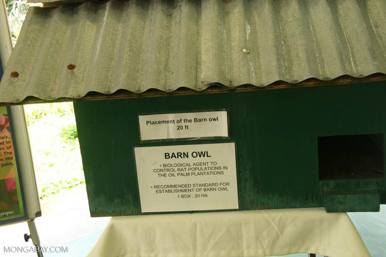 Owl boxes are used in IPM to attract barn owls, a biological agent to control rat populations in oil palm plantations