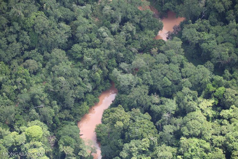 Borneo rainforest river -- sabah_1267
