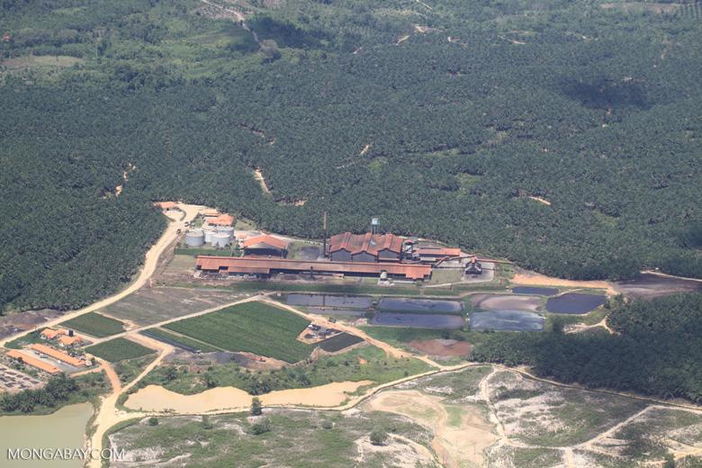 Palm oil mill -- sabah_1839