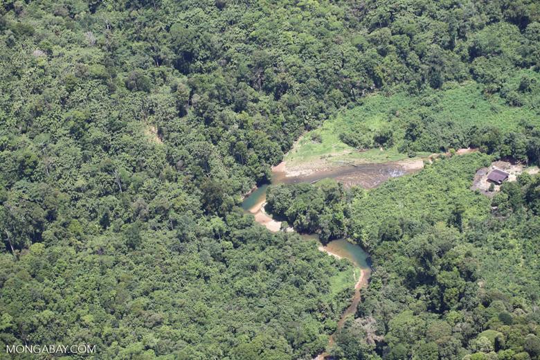 Deforestation in Borneo -- sabah_2045