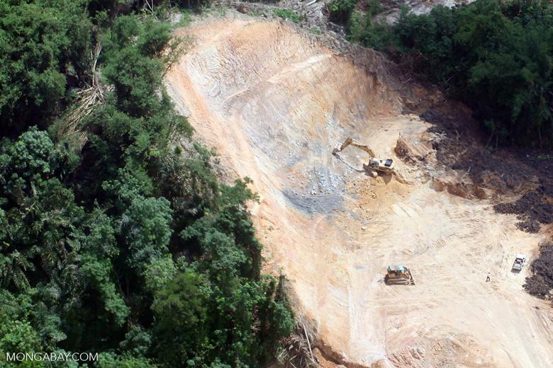 Deforestation in Borneo -- sabah_2261