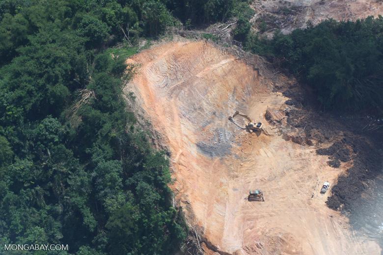 Deforestation in Borneo -- sabah_2264