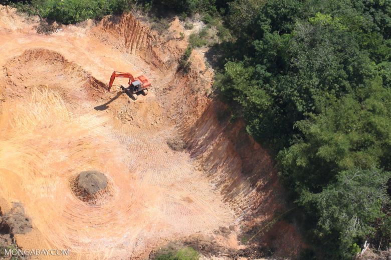 Deforestation in Borneo -- sabah_2278