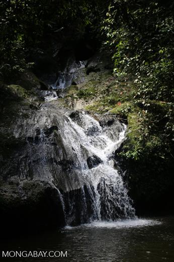 Waterfall at Danum Valley