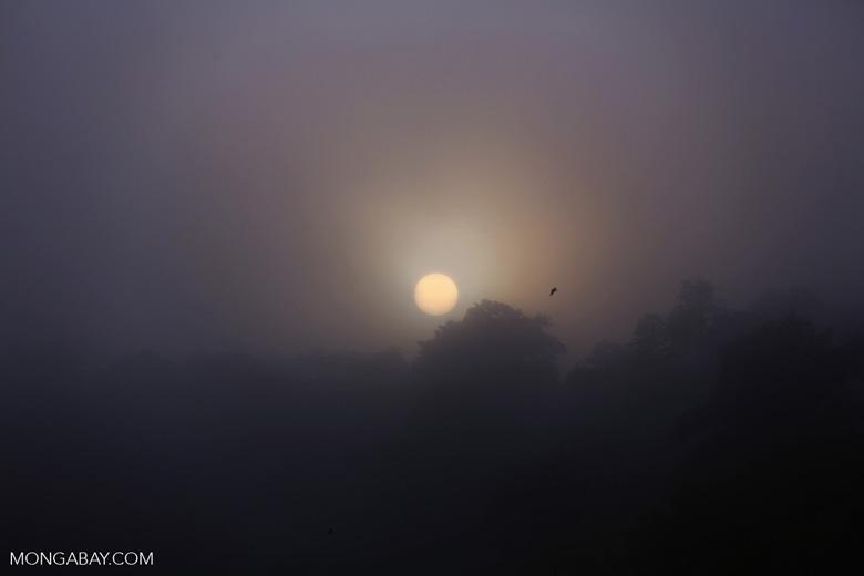 Sunrise over the Kinabatangan River -- sabah_3026