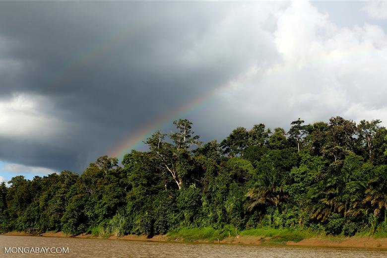 Rainbow over the Borneo rainforest -- sabah_3510
