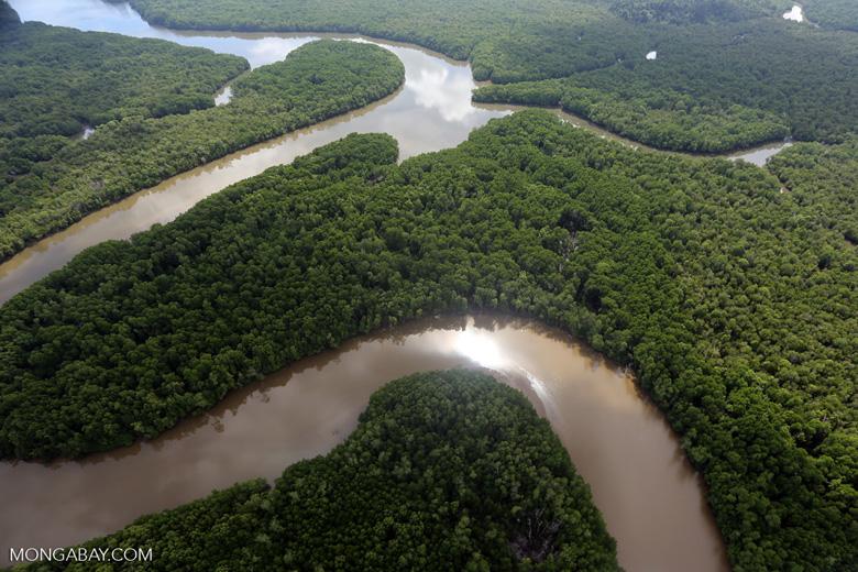 Lower Kinabatangan River -- sabah_aerial_0028