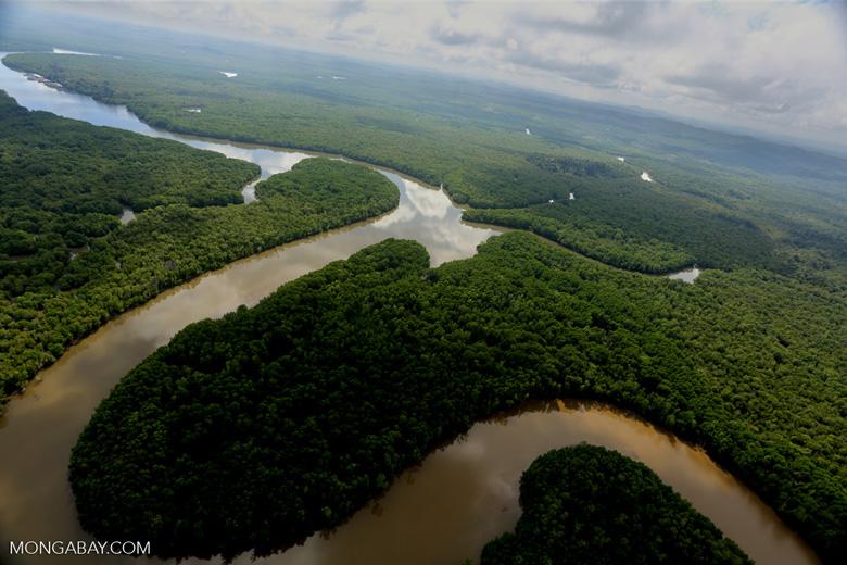 Lower Kinabatangan River -- sabah_aerial_0031