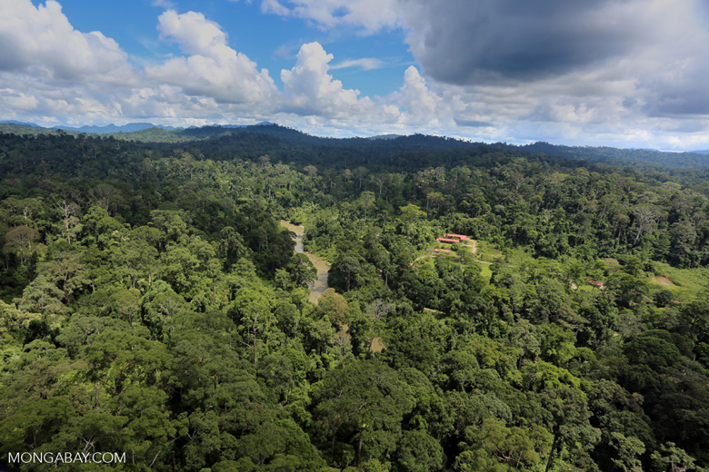Research facility in the Heart of Borneo -- sabah_aerial_0171