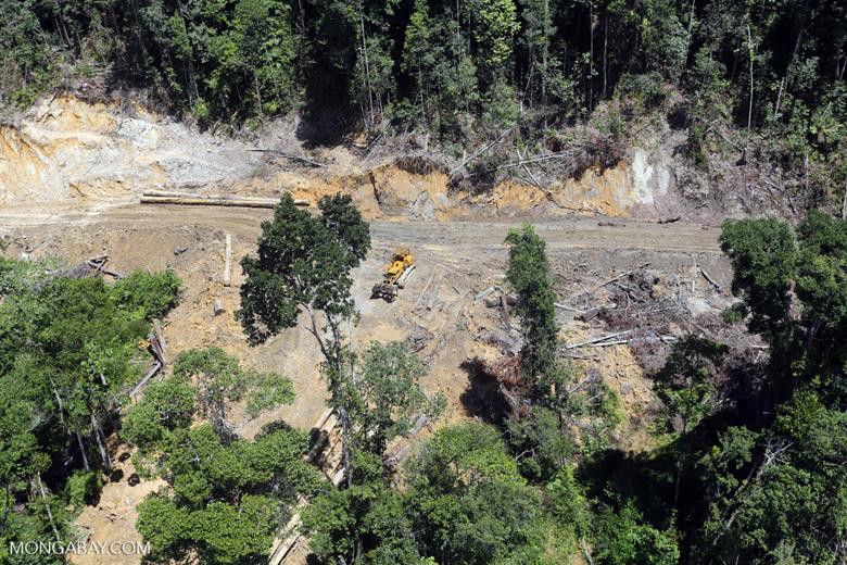 Industrial deforestation in Malaysian Borneo -- sabah_aerial_0656