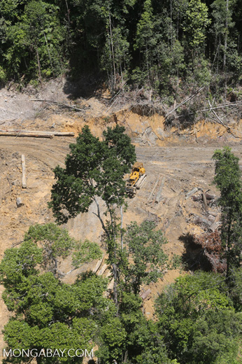 Conventional logging site in Malaysian Borneo -- sabah_aerial_0658
