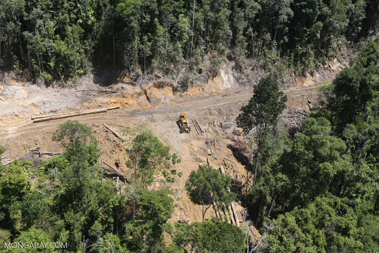 Conventional logging operation in Malaysian Borneo -- sabah_aerial_0663