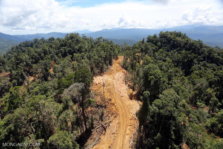 Conventional logging operation in Borneo -- sabah_aerial_0688