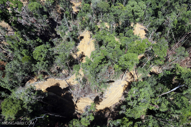 Conventional logging site in Borneo -- sabah_aerial_0709