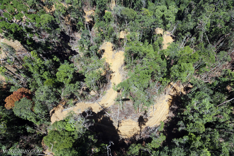 Conventional logging site in Malaysian Borneo -- sabah_aerial_0710