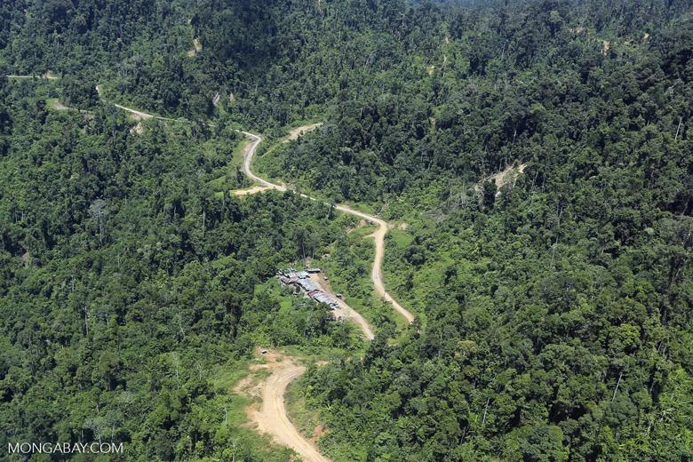 Logging road in Borneo -- sabah_aerial_0763