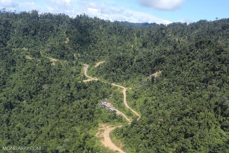 Logging road in Borneo -- sabah_aerial_0764