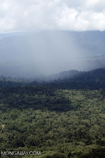 Precipitation over the rainforest -- sabah_aerial_0851
