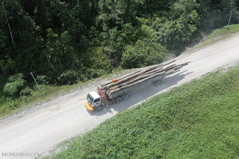 Logging truck in Borneo -- sabah_aerial_0946