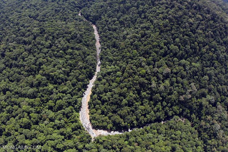 Borneo rainforest river -- sabah_aerial_1146
