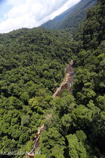 River below Maliau Falls -- sabah_aerial_1369