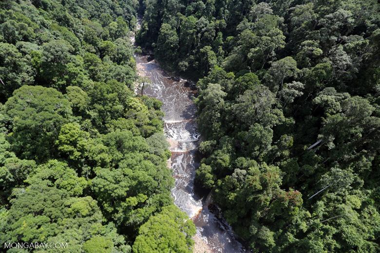 Maliau Falls -- sabah_aerial_1379