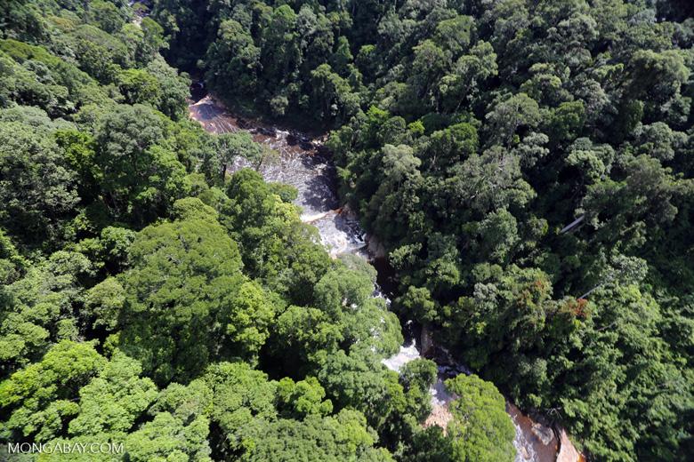 Maliau Falls -- sabah_aerial_1385