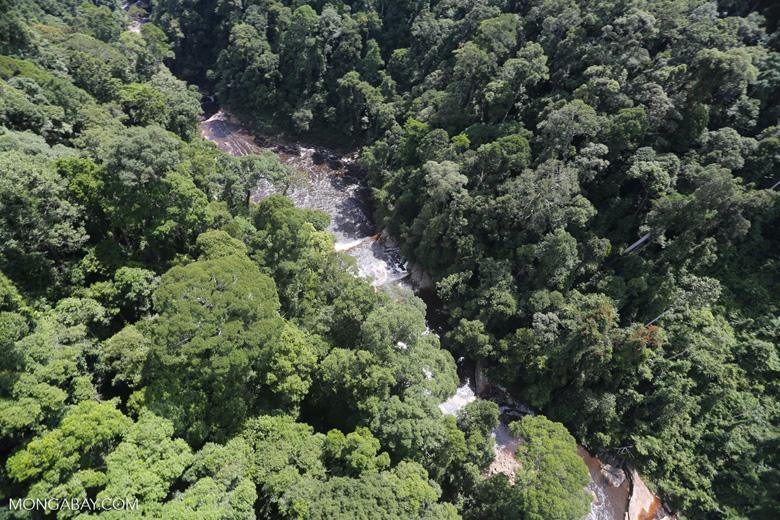 Maliau Falls -- sabah_aerial_1386