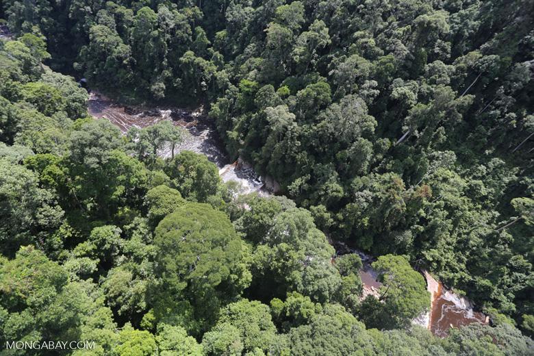 Maliau Falls -- sabah_aerial_1389