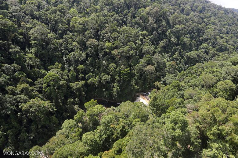 Maliau Falls -- sabah_aerial_1401