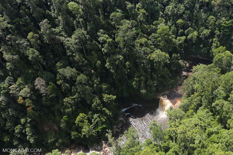 Maliau Falls -- sabah_aerial_1408