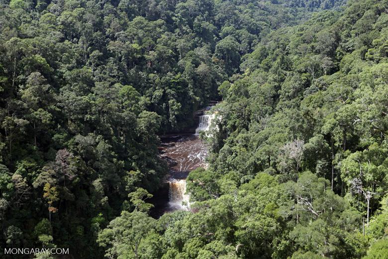 Maliau Falls -- sabah_aerial_1417