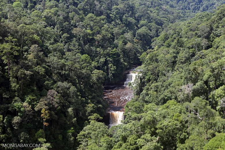 Maliau Falls -- sabah_aerial_1419